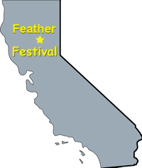 Feather Fest